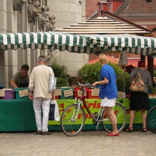 Wochenmarkt in Potsdam